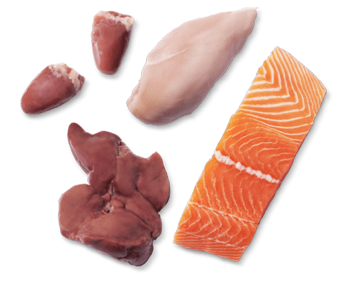 Raw Chicken and Salmon